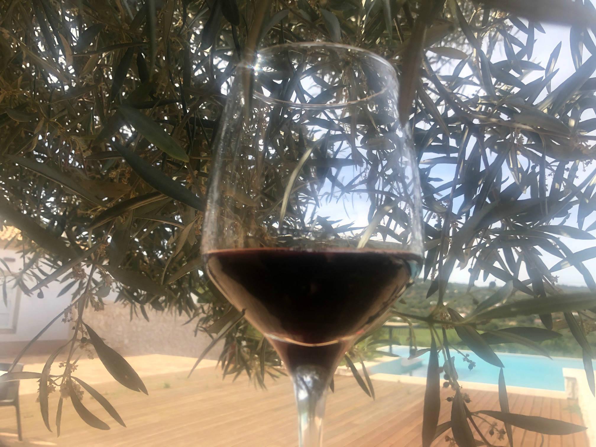 vinho tinto oost-algarve