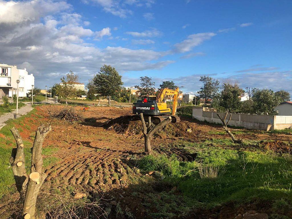 grond ruimen